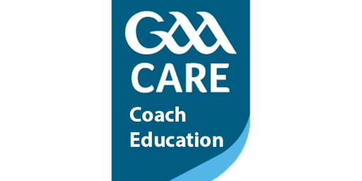 Hurling Foundation level course