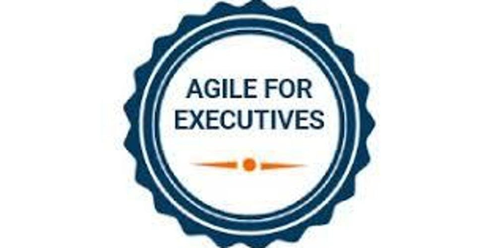 Agile For Executives 1 Day Training in Rotterdam
