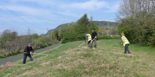 National Cycle Network Scything Task Day, Kilbarchan, Renfrewshire