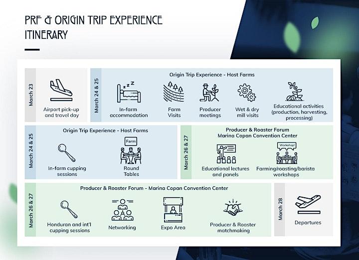 PRF & Origin Trip Experience image