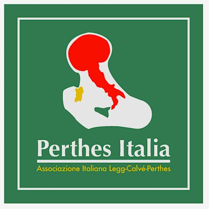 Immagine Perthes- le famiglie si incontrano: confronti e approfondimenti