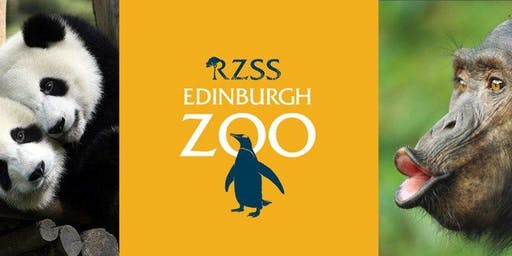 THS Second Family day at Edinburgh Zoo