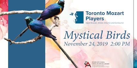 Mystical Birds tickets