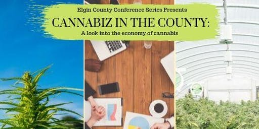 Cannabiz in the County: A look into the economy of cannabis