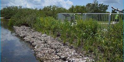 Florida's Living Shorelines Training Course for Marine Contractors