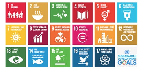 Policy Without Strategy? Challenges Facing the Global SDG Agenda tickets