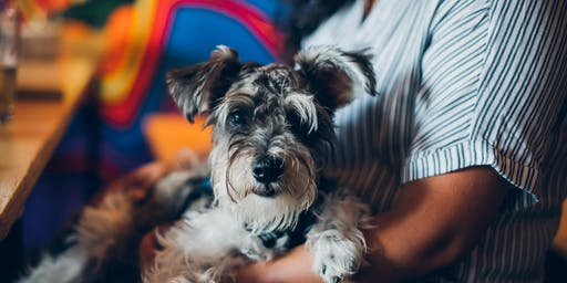 Puppies 'n' Pints with Badass Brooklyn