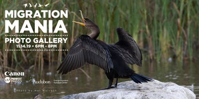 Migration Mania Open House Gallery Show!