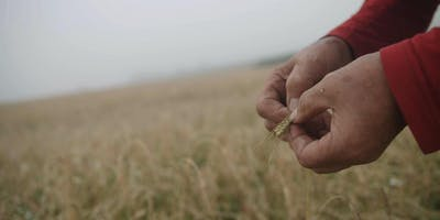 Film: In Our Hands