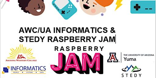 AWC/UA Informatics & STEDY Raspberry Jam
