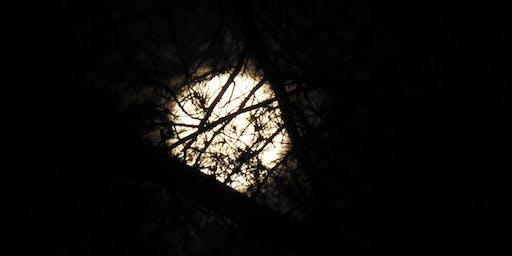 Full Hunter's Moon Hike Sunday, October 13, 2019,  5:30pm.