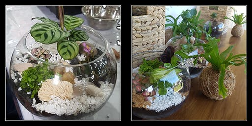 Terrarium Workshop with Rock Leaf Moss @ Two Tails Wines