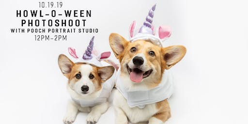Howl-o-Ween Photoshoot with Pooch Portrait Studio