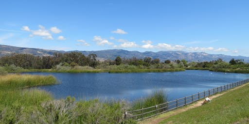 Medicinal Herb Walks of Santa Barbara- LAKE LOS CARNEROS