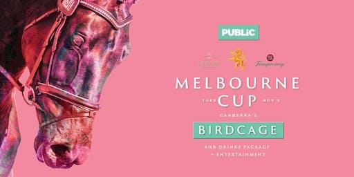 Melbourne Cup at Public