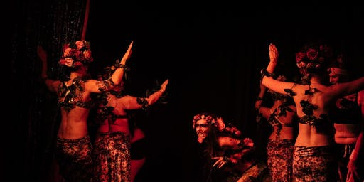 Belly Dance Classes in Lower Hutt
