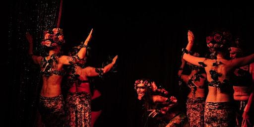 Belly Dance Classes in Lower Hutt