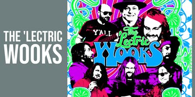 The 'Lectric Wooks/Amanda Anne Platt & the Honeycutters/Meadow Mountain