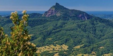 The Wilderness Wanderer's Hike Mt Warning NSW tickets