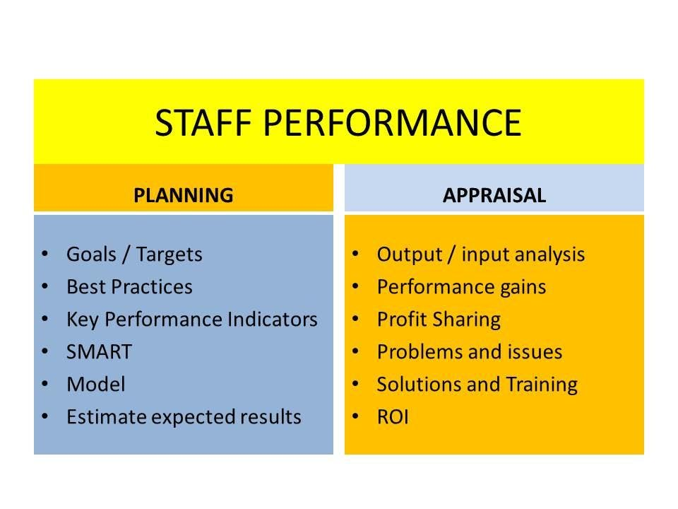 PERFORMANCE PLANNING AND APPRAISAL FOR STAFF : objective measures