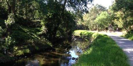 Friends of Merri Creek AGM & 30th Anniversary Celebration tickets