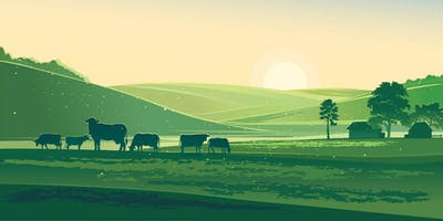 The future of UK farming and food production