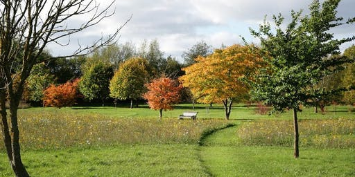 Guided Walk: Autumn in the Arboretum