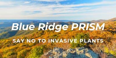 Blue Ridge PRISM Fall Saturday Workshop at Ivy Creek