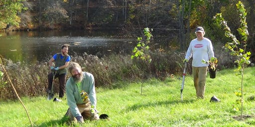 Tree Planting with CRC in Orford, NH