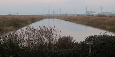RSPB World Wetlands Day Walk tickets