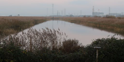 RSPB World Wetlands Day Walk