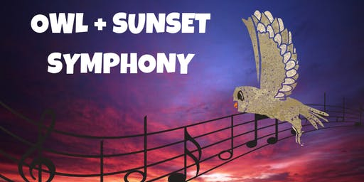Owl and Sunset Symphony