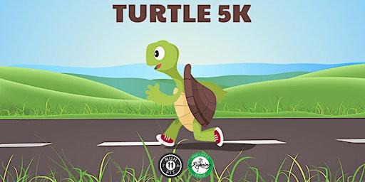Turtle 5k
