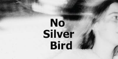 No Silver Bird Exhibition & Book Launch by Dan Commons