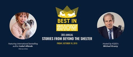 Best In Show - Stories from Beyond the Shelter
