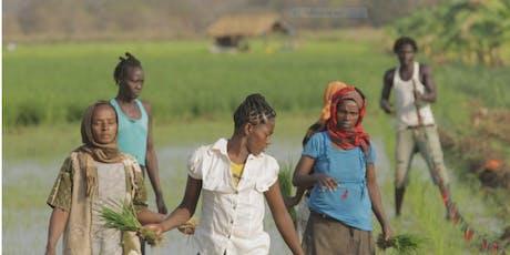 Human Rights Watch Film Festival Nairobi, Dead Donkeys Fear No Hyenas tickets