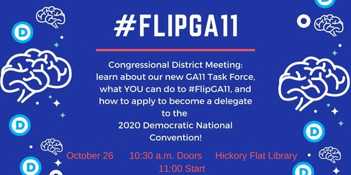 FlipGA11 Fall Congressional District Meeting w/ DPG