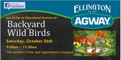 Backyard Wild Bird Seminar 2019