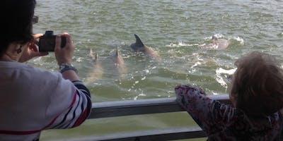 Bull River Cruises Eco/Dolphin Cruise