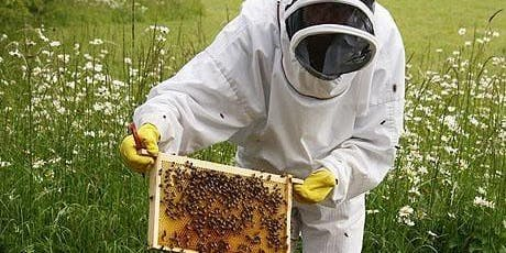 Bee Keeping for Beginners tickets