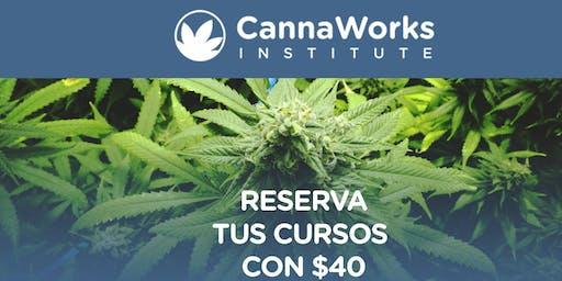 RESERVA | Cannabis Training Camp | 19 & 20 de Octubre | CannaWorks Institute