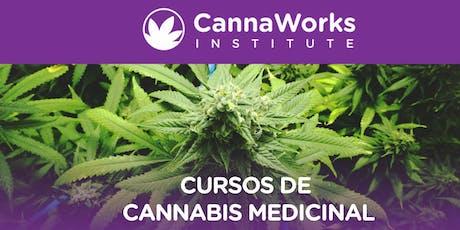 Cannabis Training Camp   19 Y 20 de Octubre   CannaWorks Institute  tickets