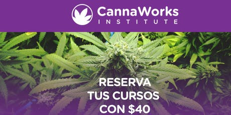 RESERVA   Cannabis Training Camp   19 & 20 de Octubre   CannaWorks Institute  tickets