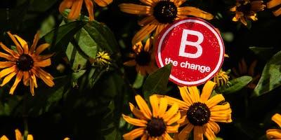 B Corp Certification Assistance