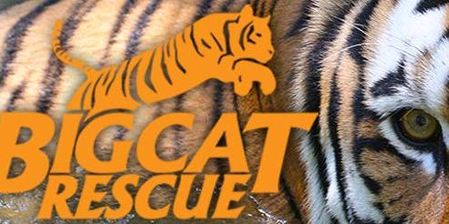 Big Cat Rescue Volunteering Event