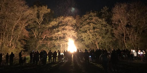 Bonfire Party with woodland activities  (low bang fireworks finale)