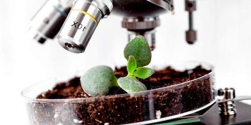 Soil Health For Your Garden
