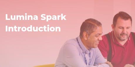 Lumina Spark Introduction tickets
