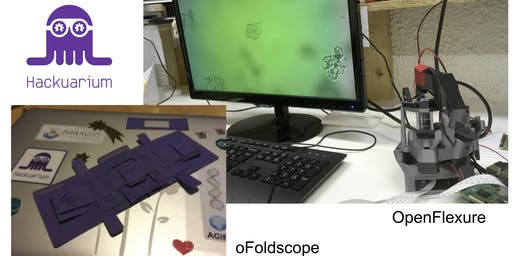 Introduction aux Jeunes sur Microscopie DIY: de l'impression 3D à l'origami
