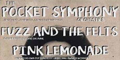 TPSO live in Norwich w/ Fuzz & the Felts, and Pink Lemonade tickets